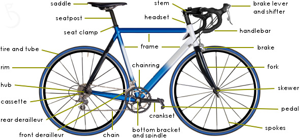 Bike Parts Explained Absolutely not it applies to